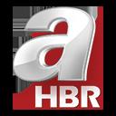 A haber Logo